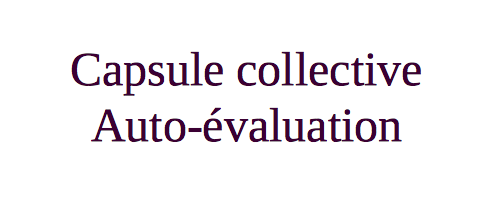 Capsule collective : s'auto-évaluer collectivement avec Explain Everything